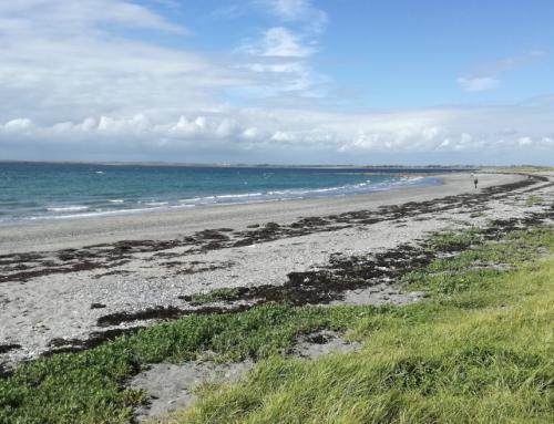 Traught Beach